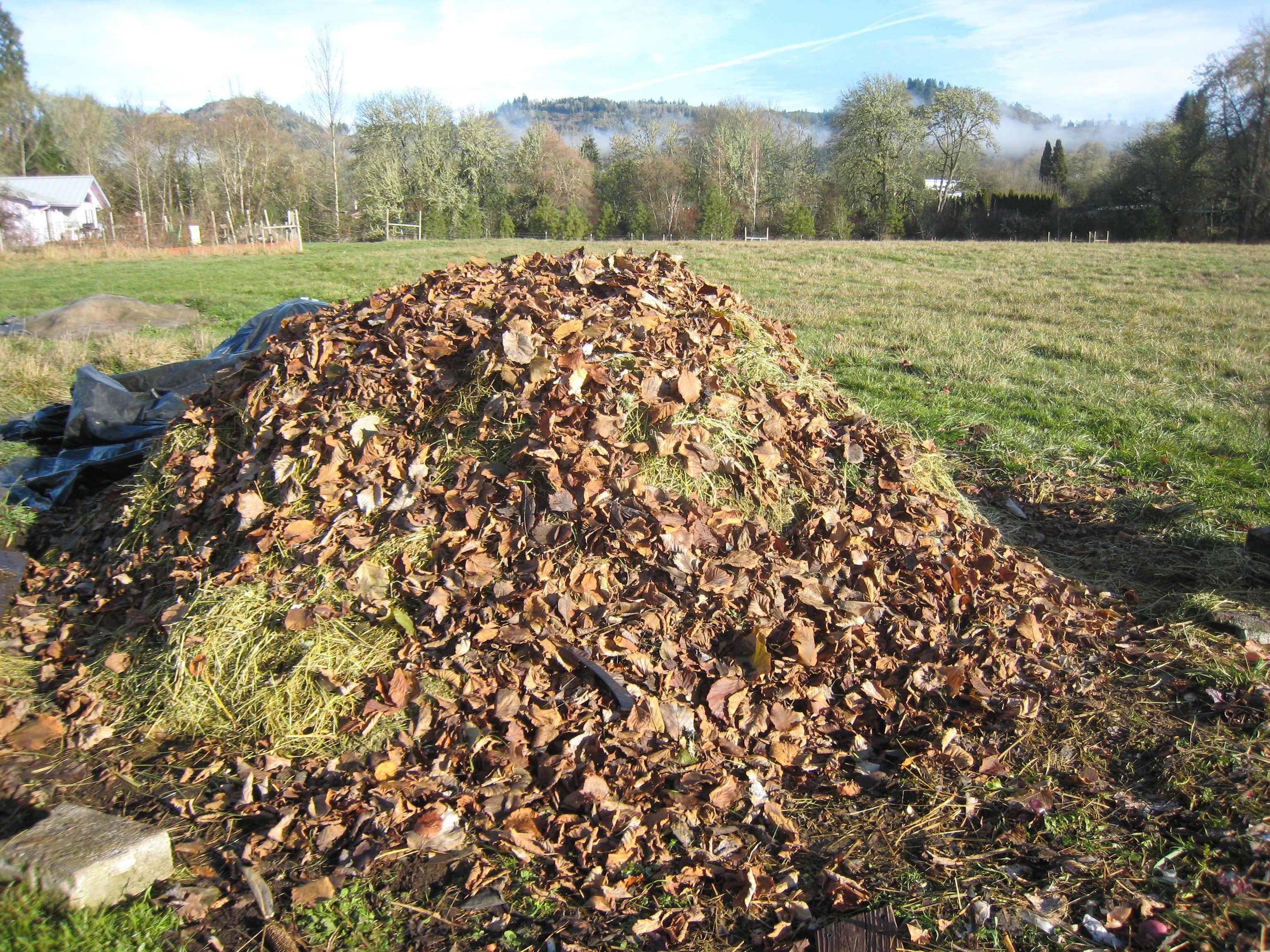 Photo of a compost pile in a field.