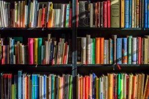 Photo of books on shelves.