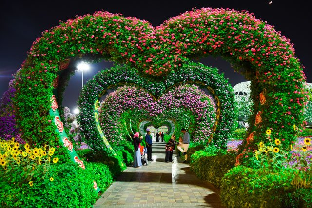 A photo of a garden that has flowers growing on heart shaped structures.
