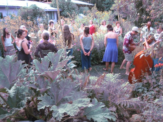 Music being played in the herb garden.