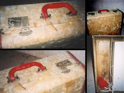 Photo of mold growing on suitcase.