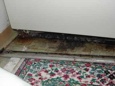 A photo of mold growing on the floor, under the refrigerator.