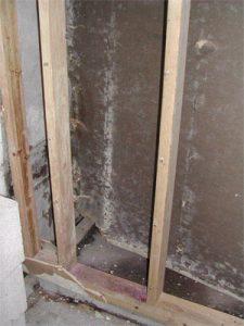 Photo of moldy wall cavity.