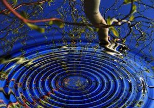 A photo of a rippling water with a tree reflecting in it.