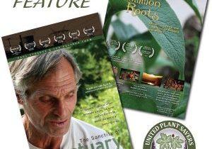 Free Herbal Movies