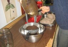 Photo of Echinacea marc being strained to ready fro pressing.