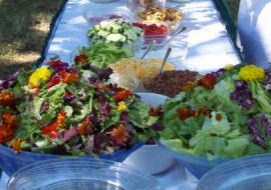 Healthy salads on a table.