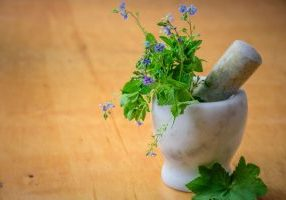 Photo of mortar and pestle with herbs.