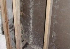 Photo of moldy wall cavity.
